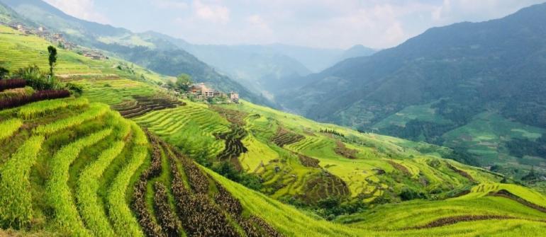 DRAČÍ HŘBET – RÝŽOVÉ TERASY V LONGSHENG ČÍNA